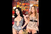 Transsexual Prostitutes 66
