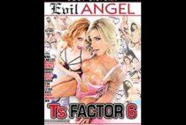 TS Factor 6