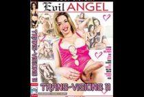 Trans-Visions 11