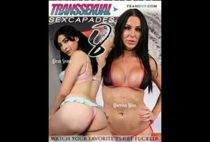 Transsexual Sexcapades 8
