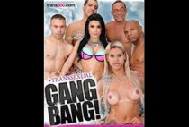Transsexual Gang Bang!