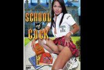 School of Cock