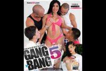 Transsexual Gang Bang 5