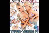 Trans-Visions 14