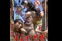 Passioni di trans