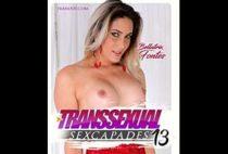 Transsexual Sexcapades 13
