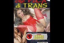 Che Fica Di Trans