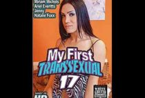 My First Transsexual 17