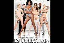 Interracial Transsexuals 2