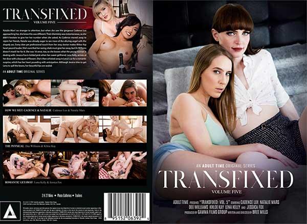 Transfixed 5