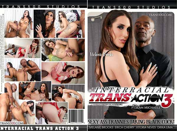 Interracial Trans Action 3