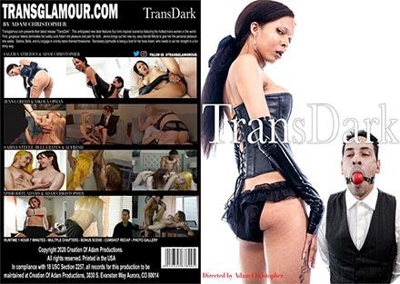TransDark